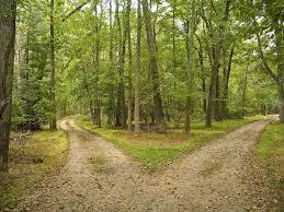 2 trails